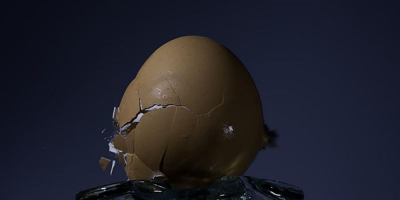 high-speed-egg4CEA4D83E-8784-49F2-4F48-56F1E3189DC8.jpg